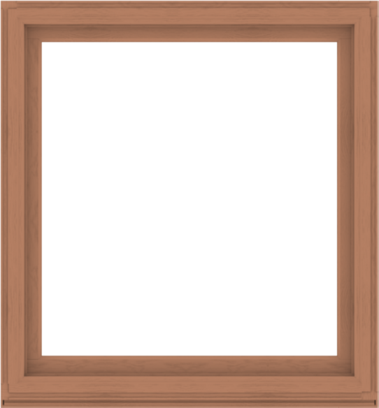 WDMA 52x56 (51.5 x 55.5 inch) Composite Wood Aluminum-Clad Picture Window without Grids-4
