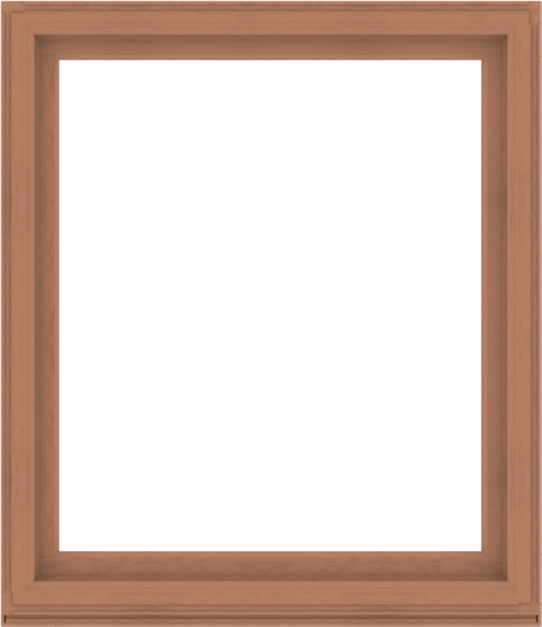WDMA 52x60 (51.5 x 59.5 inch) Composite Wood Aluminum-Clad Picture Window without Grids-4