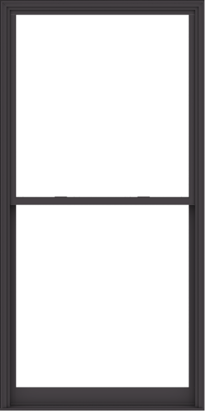 WDMA 54x108 (53.5 x 107.5 inch)  Aluminum Single Hung Double Hung Window without Grids-3