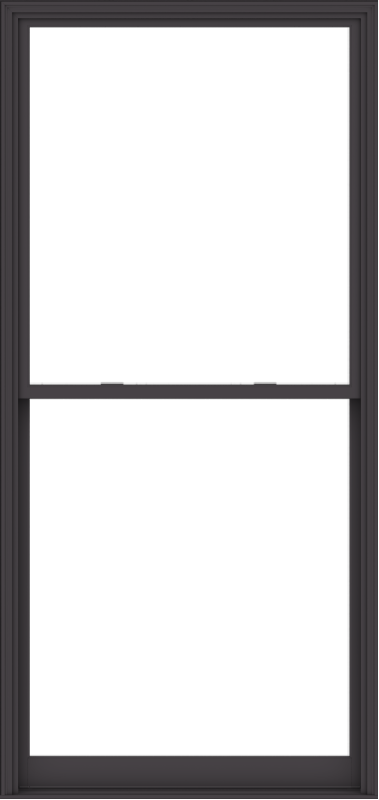 WDMA 54x114 (53.5 x 113.5 inch)  Aluminum Single Hung Double Hung Window without Grids-3