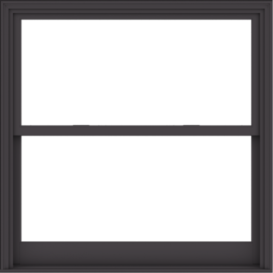 WDMA 54x54 (53.5 x 53.5 inch)  Aluminum Single Hung Double Hung Window without Grids-3