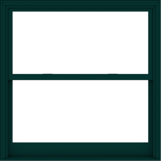 WDMA 54x54 (53.5 x 53.5 inch)  Aluminum Single Hung Double Hung Window without Grids-5