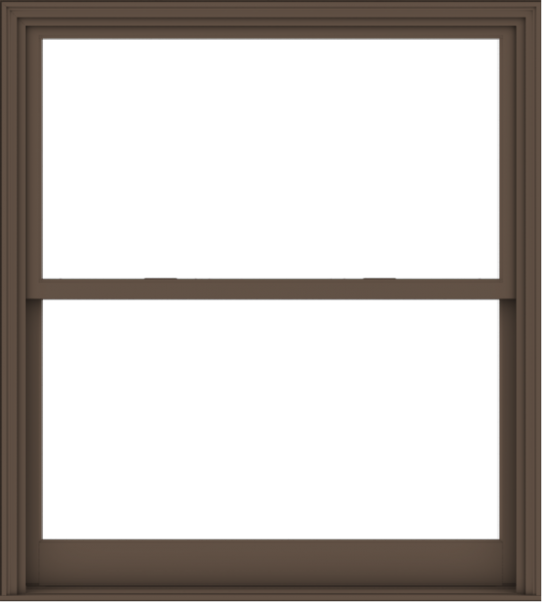 WDMA 54x60 (53.5 x 59.5 inch)  Aluminum Single Hung Double Hung Window without Grids-4