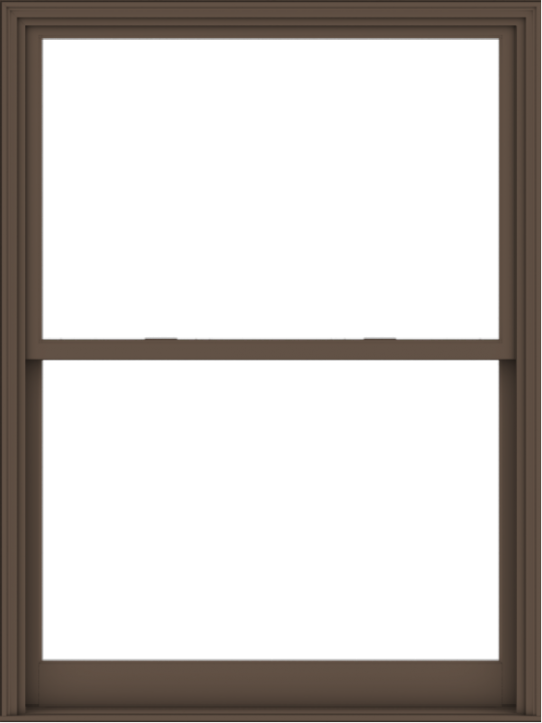 WDMA 54x72 (53.5 x 71.5 inch)  Aluminum Single Hung Double Hung Window without Grids-4