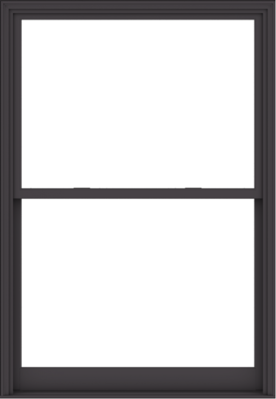 WDMA 54x78 (53.5 x 77.5 inch)  Aluminum Single Hung Double Hung Window without Grids-3