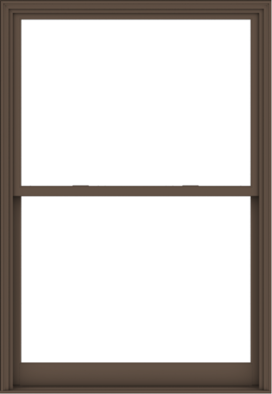 WDMA 54x78 (53.5 x 77.5 inch)  Aluminum Single Hung Double Hung Window without Grids-4