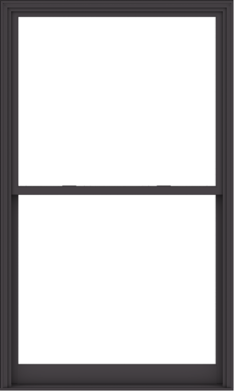 WDMA 54x90 (53.5 x 89.5 inch)  Aluminum Single Hung Double Hung Window without Grids-3