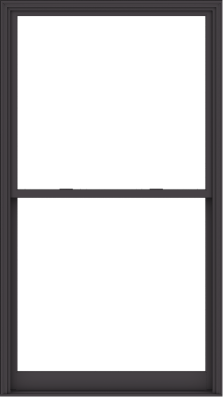 WDMA 54x96 (53.5 x 95.5 inch)  Aluminum Single Hung Double Hung Window without Grids-3