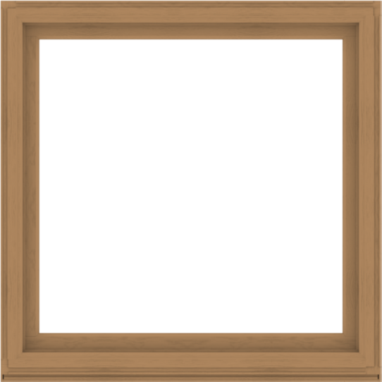 WDMA 56x56 (55.5 x 55.5 inch) Composite Wood Aluminum-Clad Picture Window without Grids-1