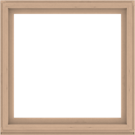 WDMA 56x56 (55.5 x 55.5 inch) Composite Wood Aluminum-Clad Picture Window without Grids-2