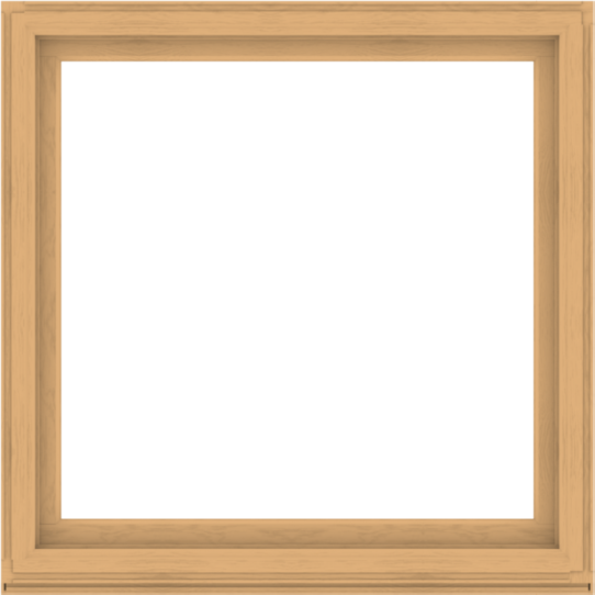 WDMA 56x56 (55.5 x 55.5 inch) Composite Wood Aluminum-Clad Picture Window without Grids-3