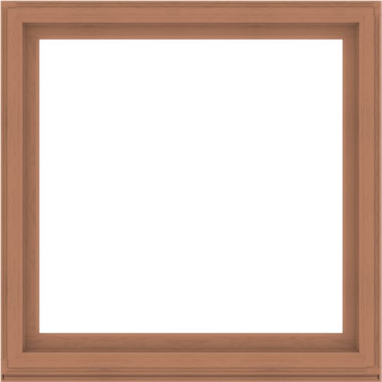 WDMA 56x56 (55.5 x 55.5 inch) Composite Wood Aluminum-Clad Picture Window without Grids-4