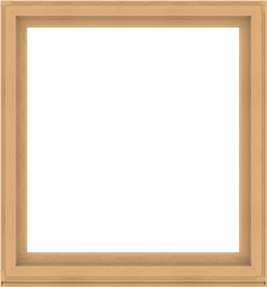 WDMA 56x60 (55.5 x 59.5 inch) Composite Wood Aluminum-Clad Picture Window without Grids-3