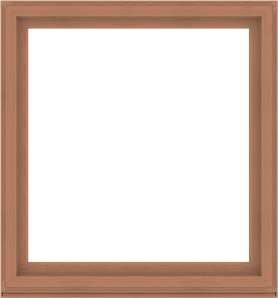 WDMA 56x60 (55.5 x 59.5 inch) Composite Wood Aluminum-Clad Picture Window without Grids-4