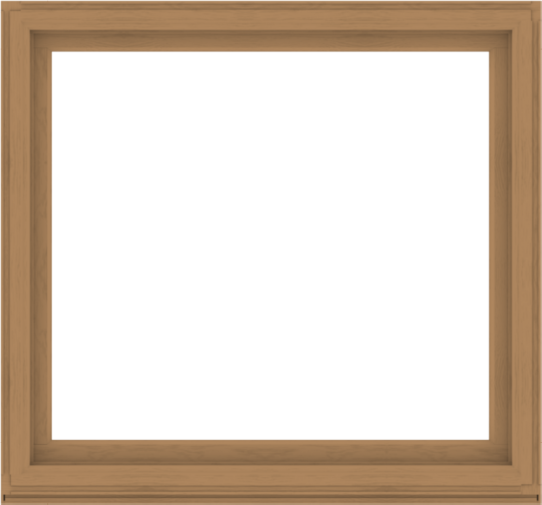 WDMA 60x56 (59.5 x 55.5 inch) Composite Wood Aluminum-Clad Picture Window without Grids-1
