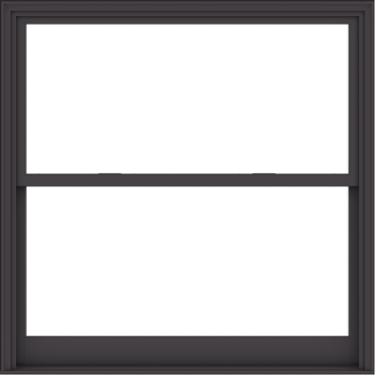 WDMA 60x60 (59.5 x 59.5 inch)  Aluminum Single Hung Double Hung Window without Grids-3