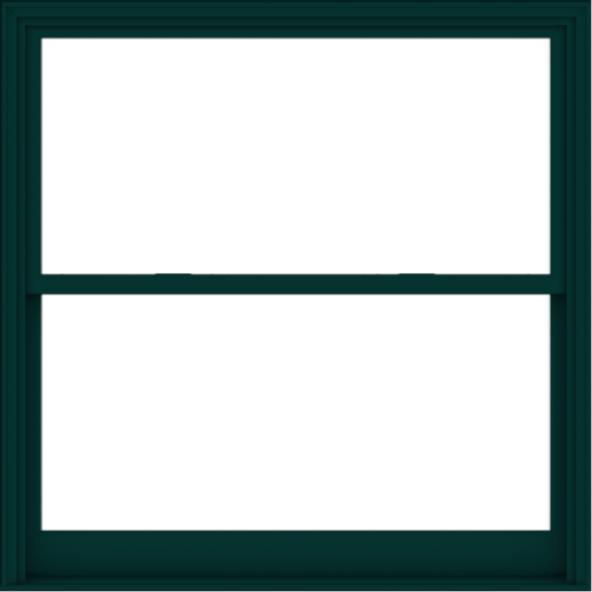 WDMA 60x60 (59.5 x 59.5 inch)  Aluminum Single Hung Double Hung Window without Grids-5
