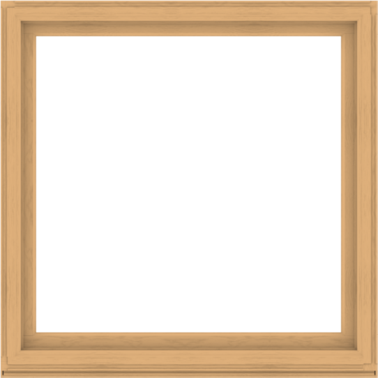 WDMA 60x60 (59.5 x 59.5 inch) Composite Wood Aluminum-Clad Picture Window without Grids-3