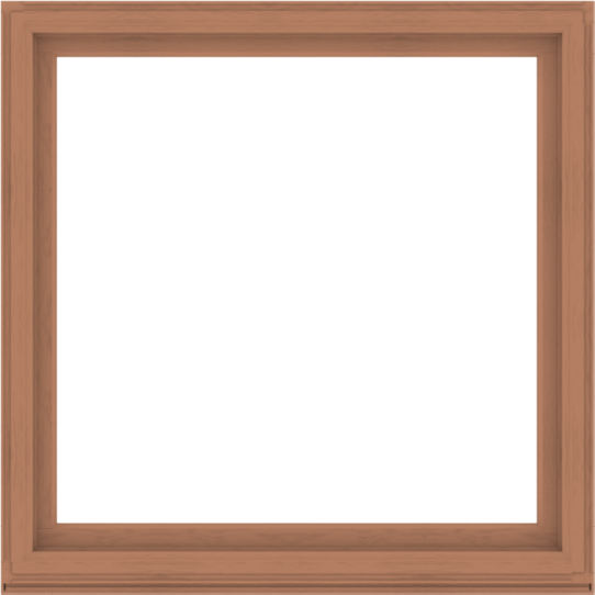 WDMA 60x60 (59.5 x 59.5 inch) Composite Wood Aluminum-Clad Picture Window without Grids-4