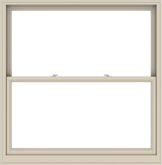 WDMA 60x61 (59.5 x 60.5 inch)  Aluminum Single Hung Double Hung Window without Grids-2