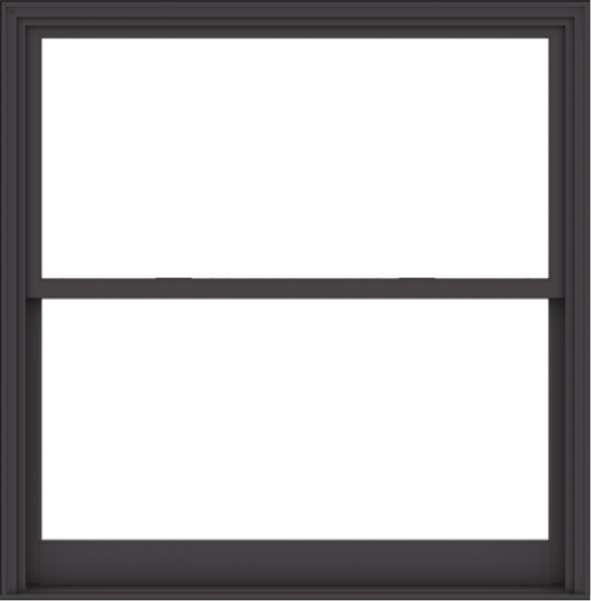 WDMA 60x61 (59.5 x 60.5 inch)  Aluminum Single Hung Double Hung Window without Grids-3