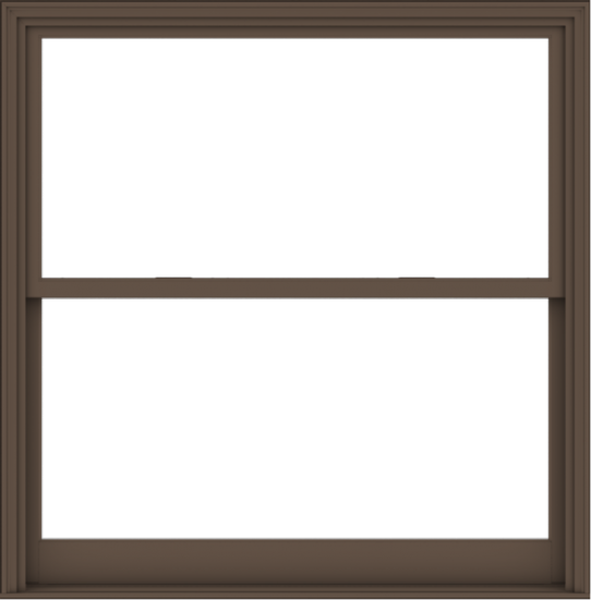 WDMA 60x61 (59.5 x 60.5 inch)  Aluminum Single Hung Double Hung Window without Grids-4