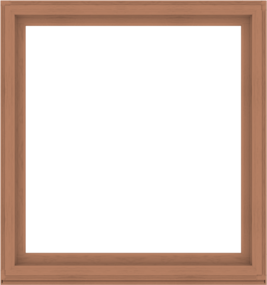 WDMA 60x64 (59.5 x 63.5 inch) Composite Wood Aluminum-Clad Picture Window without Grids-4