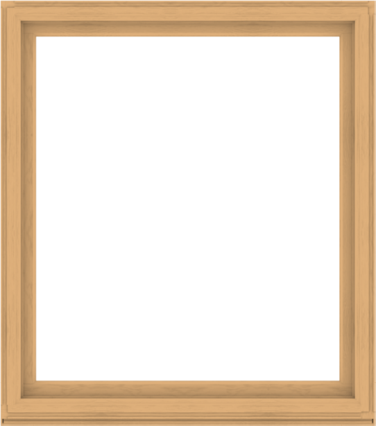 WDMA 60x68 (59.5 x 67.5 inch) Composite Wood Aluminum-Clad Picture Window without Grids-3