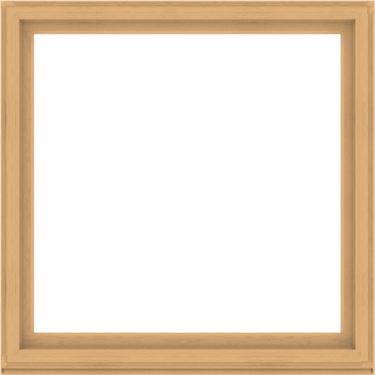WDMA 64x64 (63.5 x 63.5 inch) Composite Wood Aluminum-Clad Picture Window without Grids-3