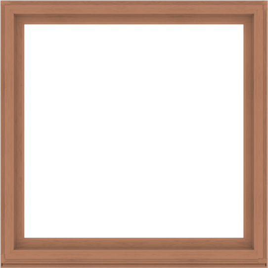 WDMA 64x64 (63.5 x 63.5 inch) Composite Wood Aluminum-Clad Picture Window without Grids-4