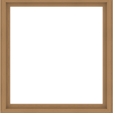WDMA 64x68 (63.5 x 67.5 inch) Composite Wood Aluminum-Clad Picture Window without Grids-1