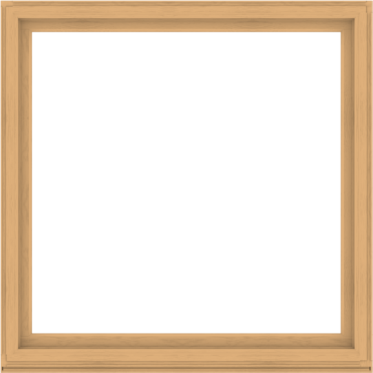 WDMA 68x68 (67.5 x 67.5 inch) Composite Wood Aluminum-Clad Picture Window without Grids-3