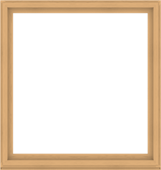 WDMA 72x76 (71.5 x 75.5 inch) Composite Wood Aluminum-Clad Picture Window without Grids-3