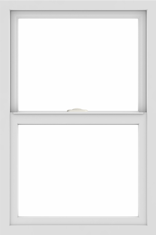 WDMA 24x36 (23.5 x 35.5 inch) black uPVC/Vinyl Single and Double Hung Window without grids interior